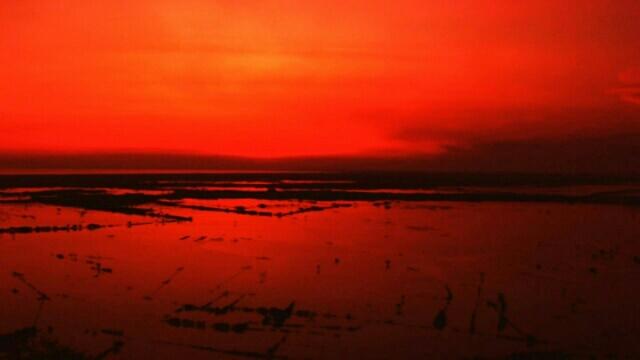 トンレサップ湖 【カンボジア シェムリアップ】